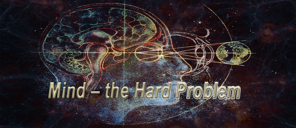 Mind -  the Hard Problem - Philosophy