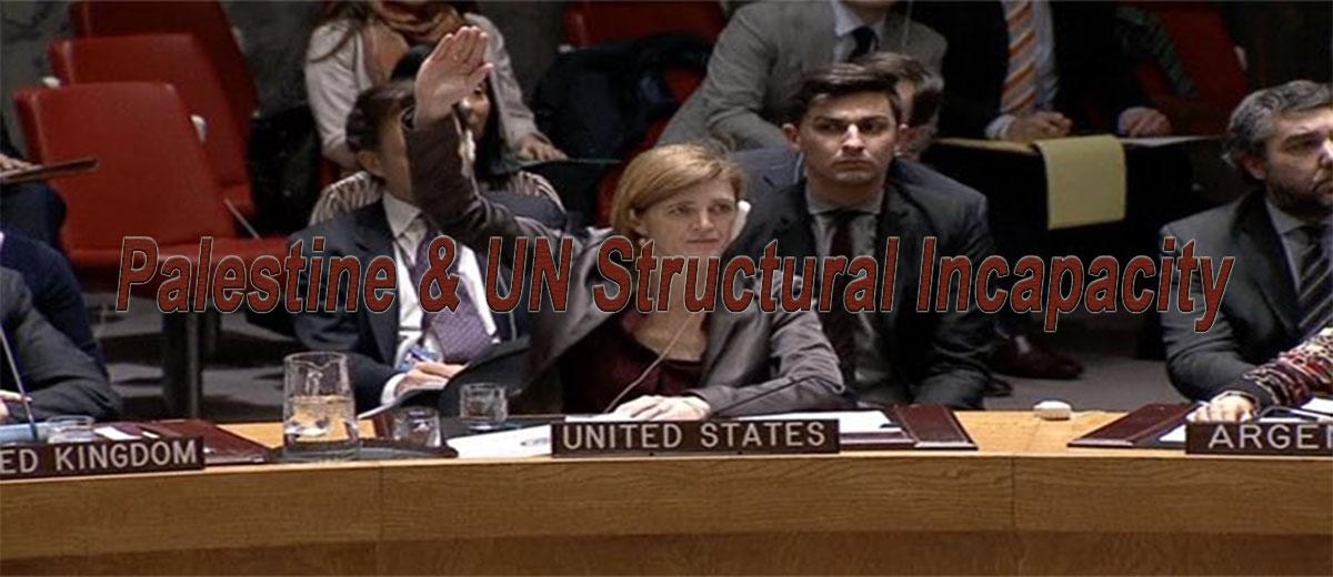 Palestine & UN Structural Incapacity    - Palestine